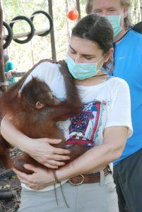 Rimba Raya Orangutan Reserve REDD+